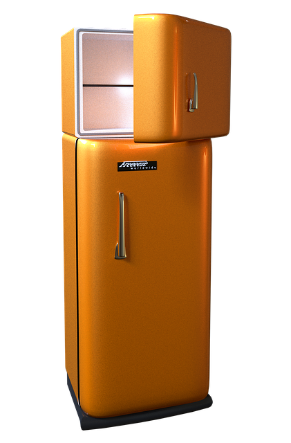 Fridge - Make sure you learn on time how to prepare your refrigerator for a move.