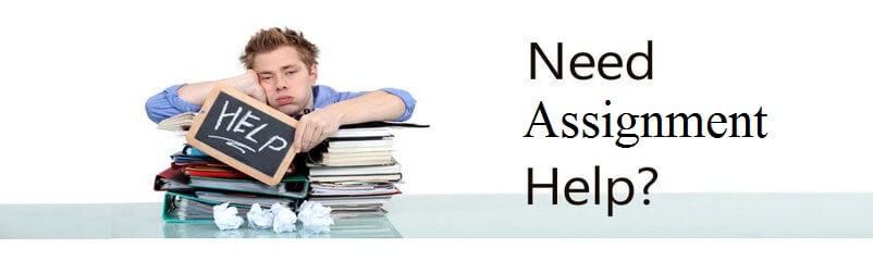 The 5 Best Homework Help Sites for | Free Buyers Guide